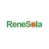 PT Renesola Clean Energy