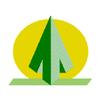 PT Adindo Foresta Indonesia Tbk (Perseroan)