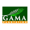 PT GAMA Plantation