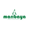 Maribaya Resort